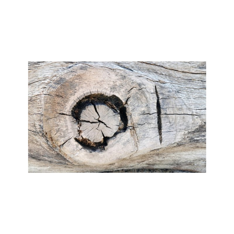 Wood Texture #1 Accessories Face Mask by Hadeda Creative's Artist Shop