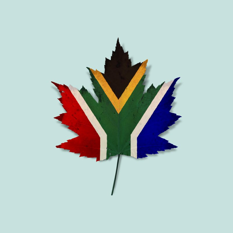 South Africa Maple Home Framed Fine Art Print by Hadeda Creative's Artist Shop