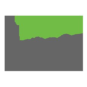Hadeda Creative's Artist Shop Logo