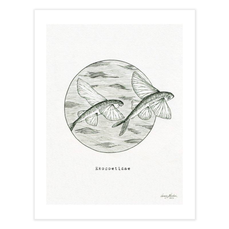 Flying Fish - Exocoetidae Home Fine Art Print by HoneyGherkin's Artist Shop