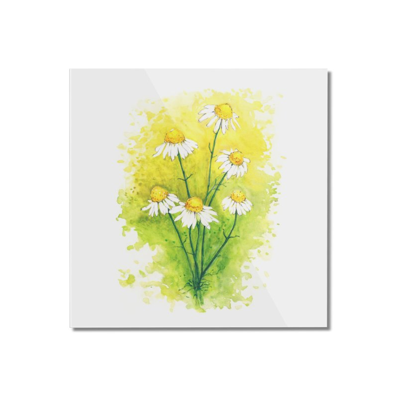 Chamomile Home Mounted Acrylic Print by HoneyGherkin's Artist Shop