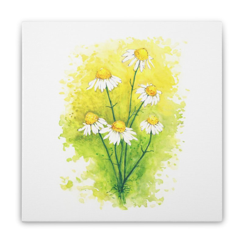 Chamomile Home Stretched Canvas by HoneyGherkin's Artist Shop
