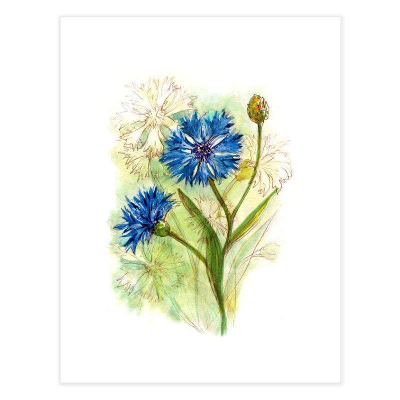 Cornflower Home Fine Art Print by HoneyGherkin's Artist Shop