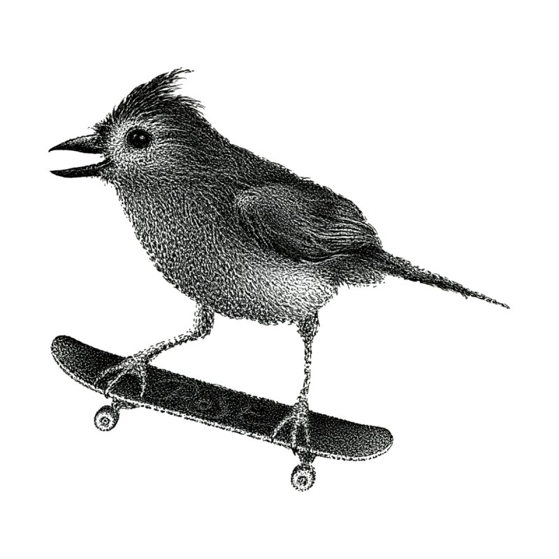 Skater by Igor Pose by IgorPose's Artist Shop