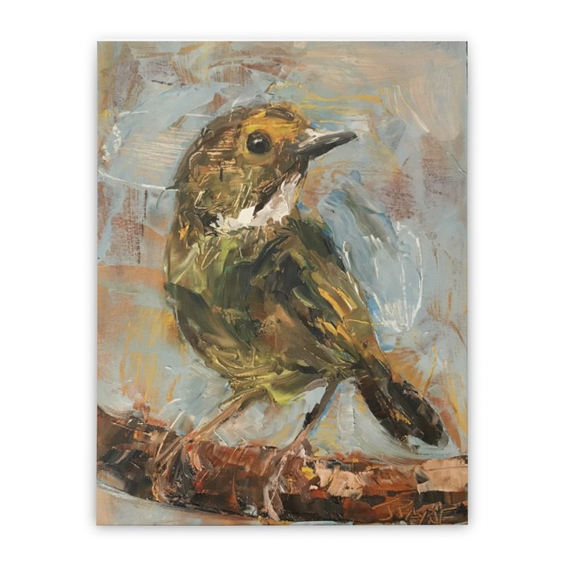 Little Bird Home Stretched Canvas by JPayneArt's Artist Shop