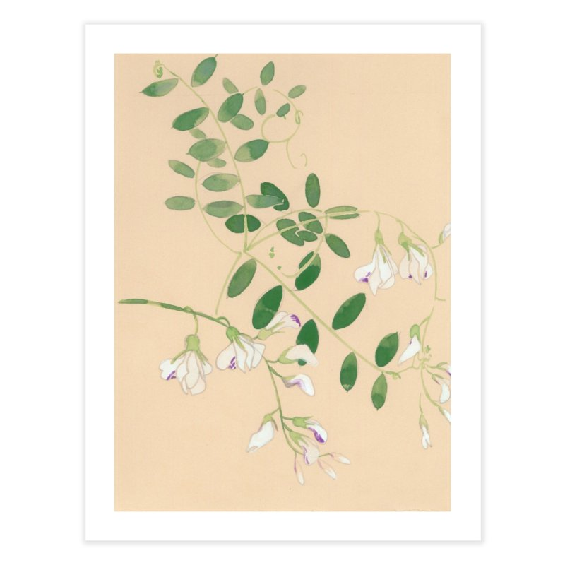 Wild Sweet Peas Home Fine Art Print by Jess Love