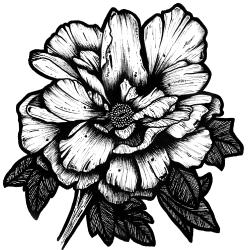 JuanitaGarcia Logo