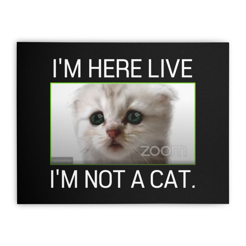 I'm Here Live. I'm Not a Cat. Home Stretched Canvas by The Strange Pope's Stuff-Shack