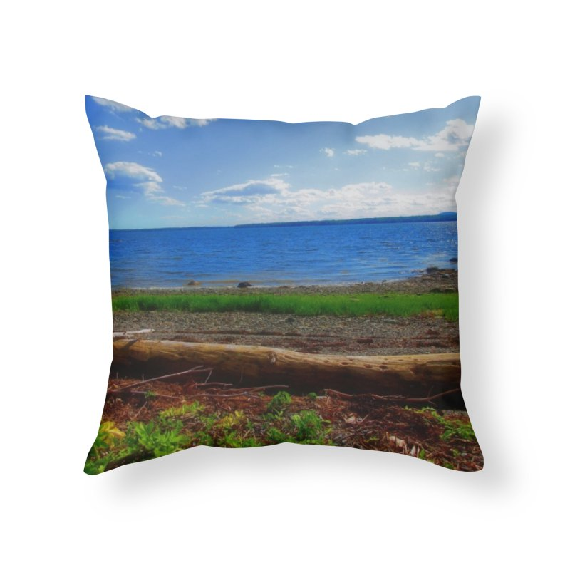 Atlantic Coast 3 Home Throw Pillow by Karmic Reaction Art