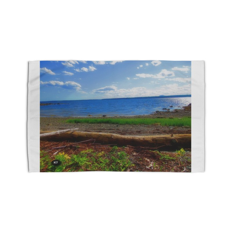 Atlantic Coast 3 Home Rug by Karmic Reaction Art