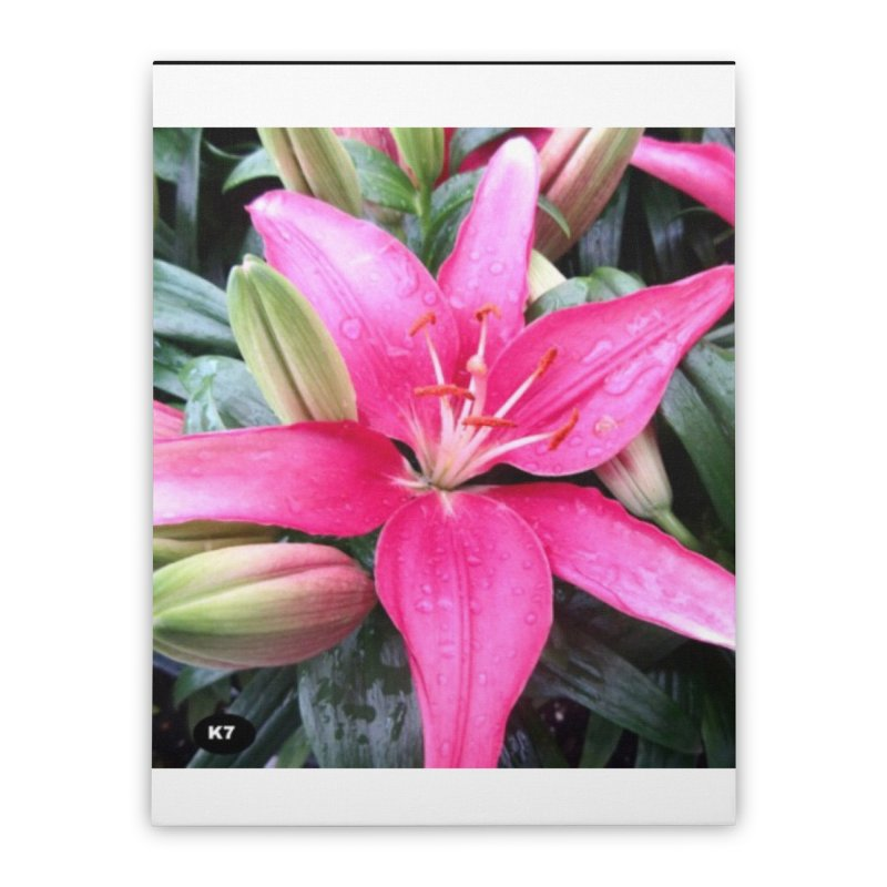 Pink Flower Home Stretched Canvas by Karmic Reaction Art