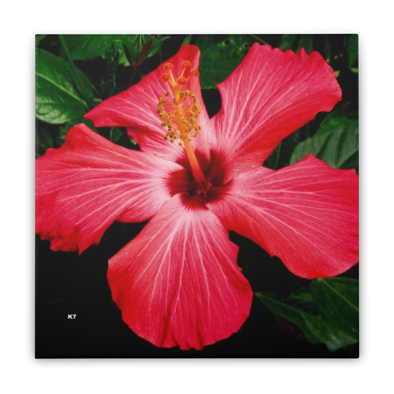 Red Flower Home Stretched Canvas by Karmic Reaction Art