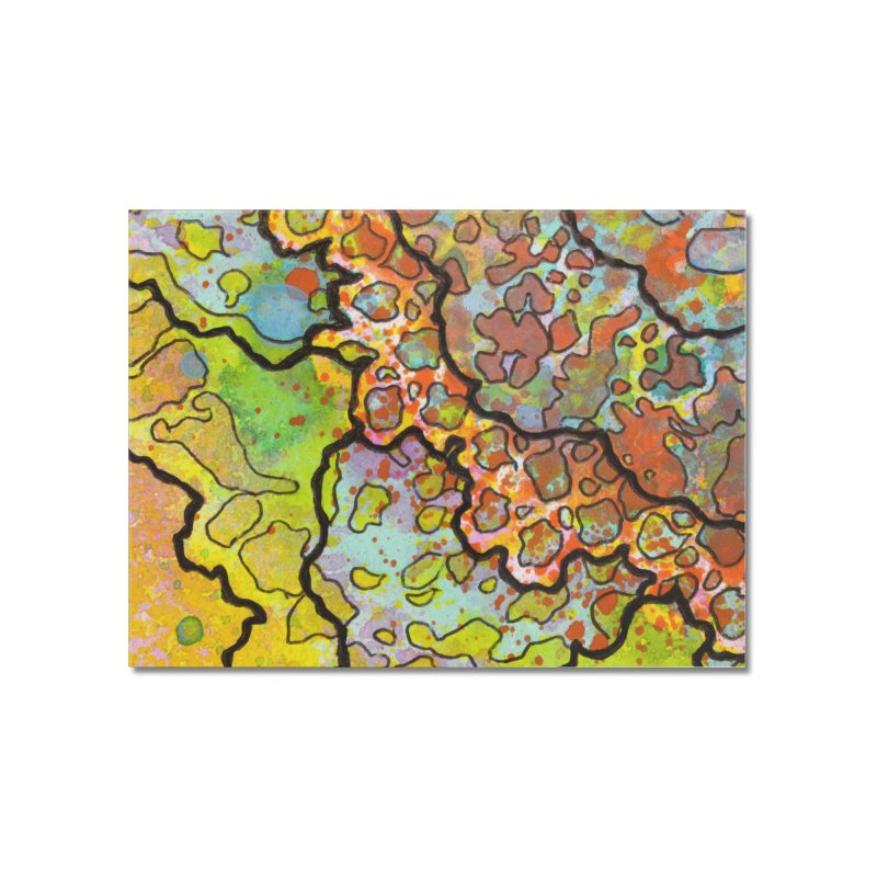 13, Inset A Home Mounted Acrylic Print by Katie Schutte Art