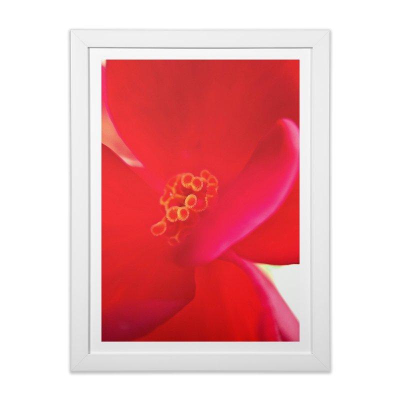Red Flower 1 Home Framed Fine Art Print by Katie Schutte Art