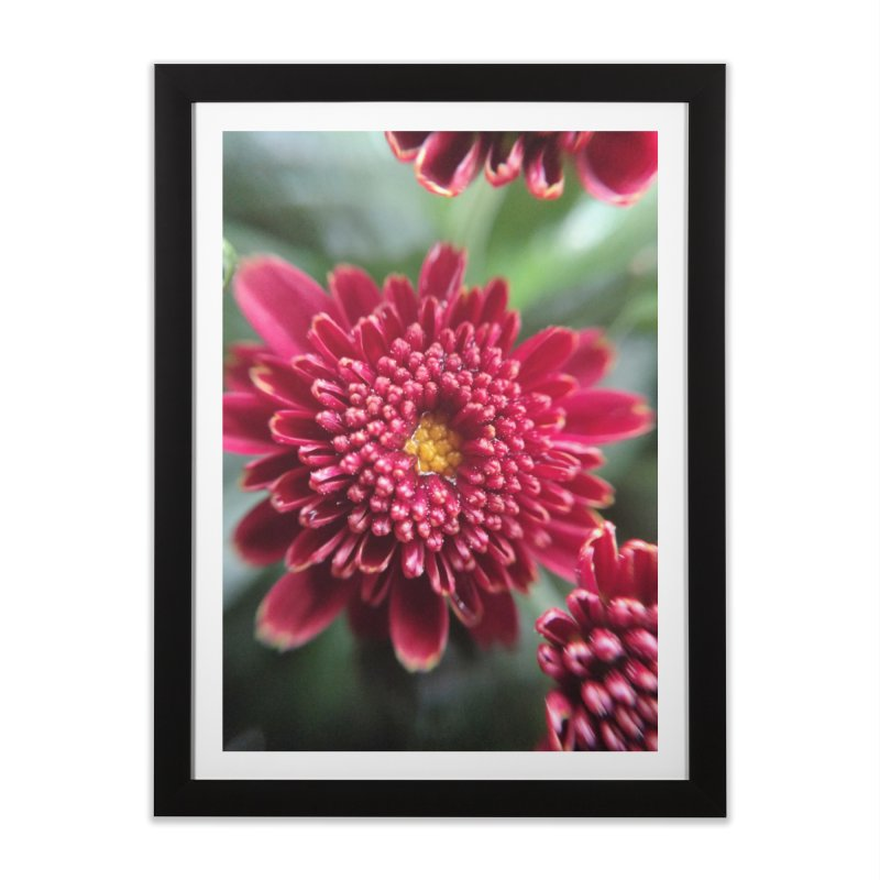 Dew in Framed Fine Art Print Black by Katie Schutte Art