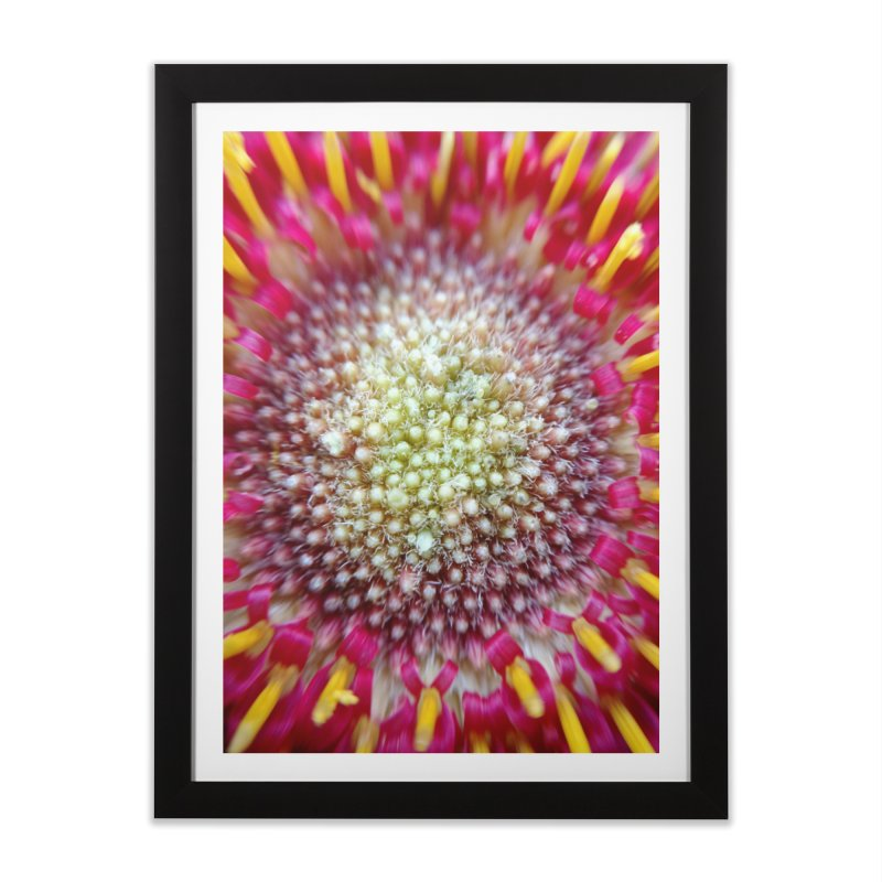 Burst Home Framed Fine Art Print by Katie Schutte Art
