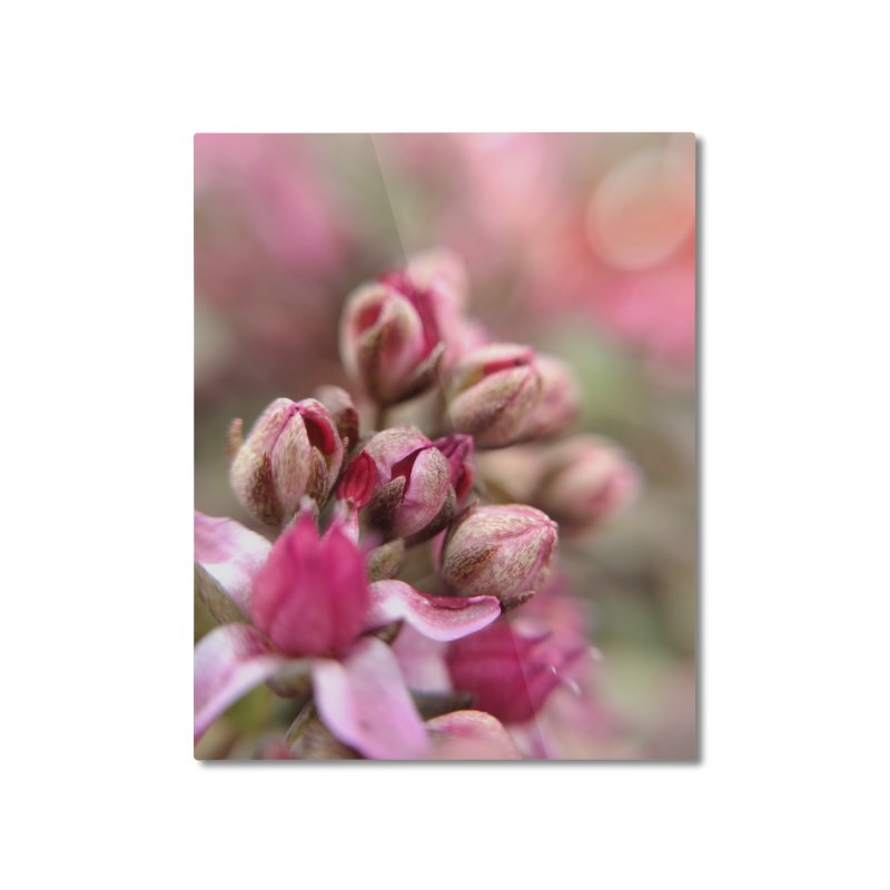 Cluster Buds Home Mounted Aluminum Print by Katie Schutte Art