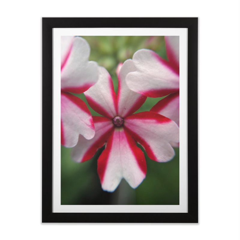Pink Stripes 1 in Framed Fine Art Print Black by Katie Schutte Art