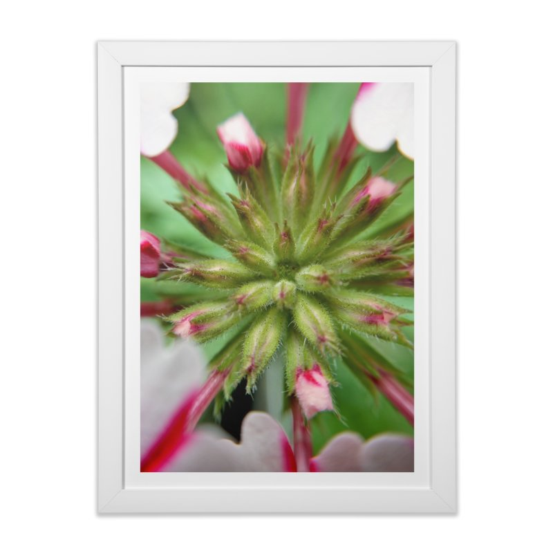 Pink Stripes 2 Home Framed Fine Art Print by Katie Schutte Art