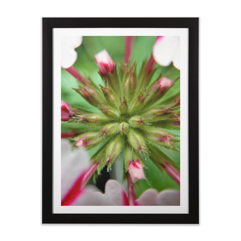 Pink Stripes 2 in Framed Fine Art Print Black by Katie Schutte Art