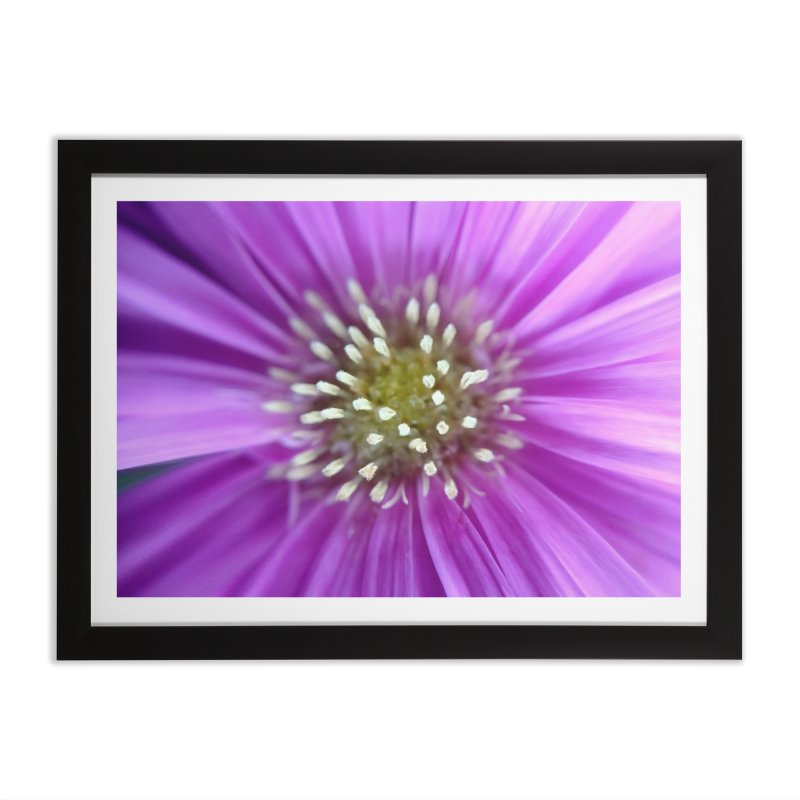 Purple Sun Home Framed Fine Art Print by Katie Schutte Art