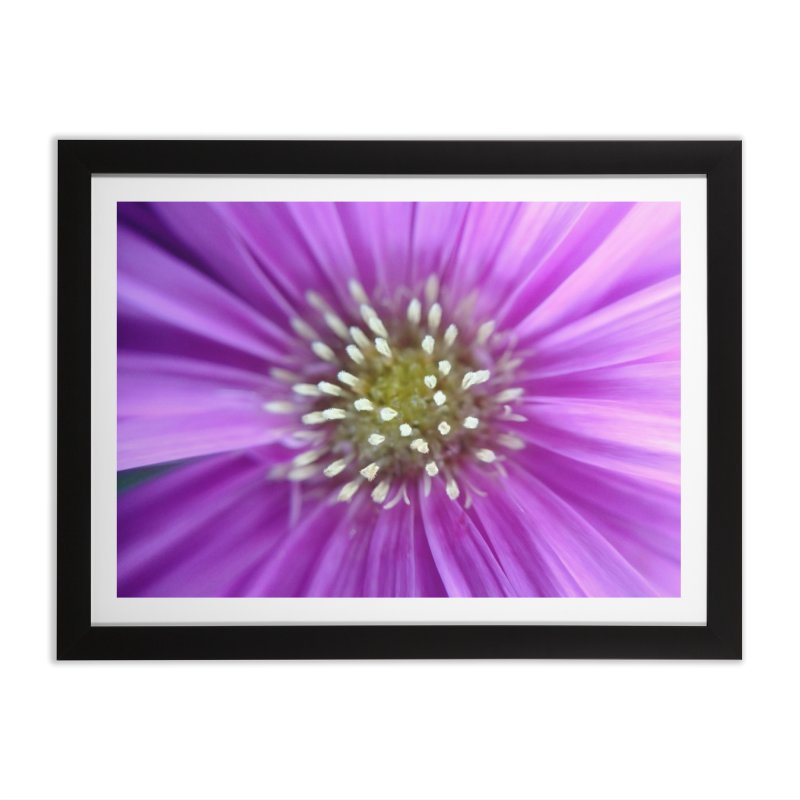 Purple Sun in Framed Fine Art Print Black by Katie Schutte Art