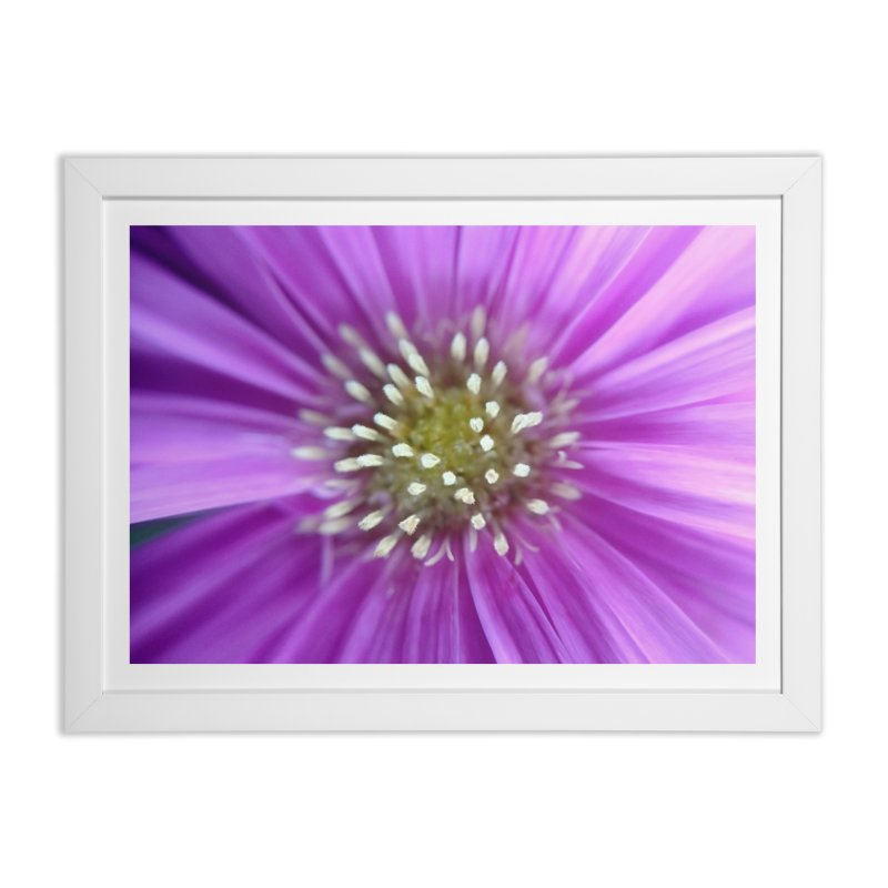 Purple Sun Home Framed Fine Art Print by Katie Schutte Art
