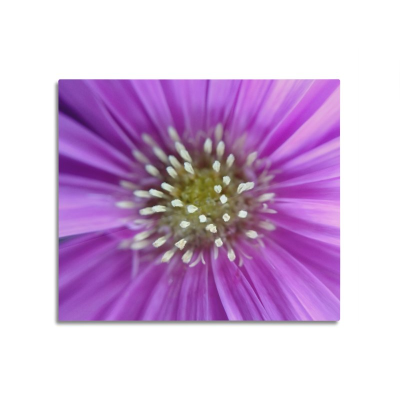 Purple Sun Home Mounted Aluminum Print by Katie Schutte Art