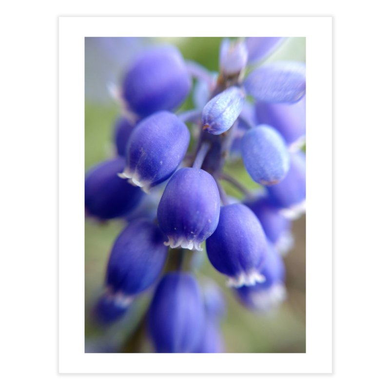 Purple Bells Home Fine Art Print by Katie Schutte Art