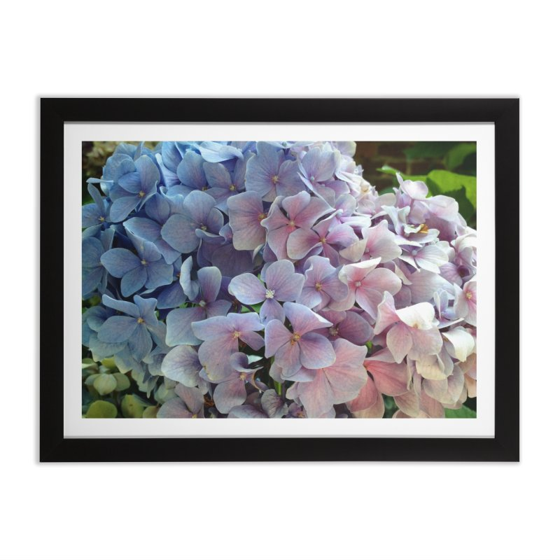 Hydrangea in Framed Fine Art Print Black by Katie Schutte Art