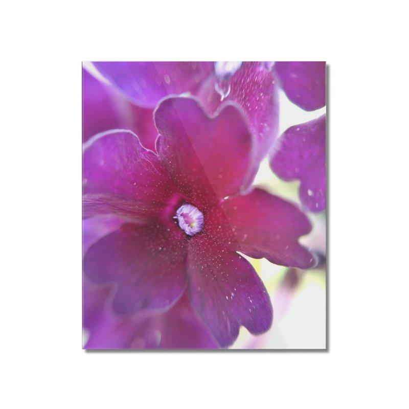 Purple Flower Home Mounted Acrylic Print by Katie Schutte Art