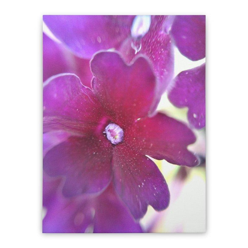 Purple Flower Home Stretched Canvas by Katie Schutte Art
