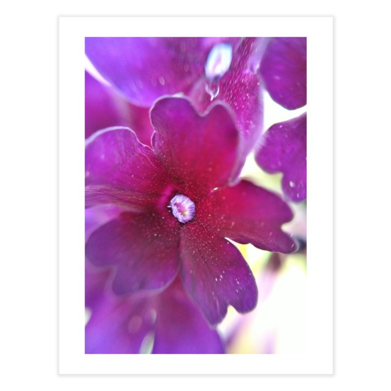 Purple Flower Home Fine Art Print by Katie Schutte Art