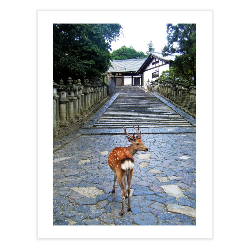 Nara 1 Home Fine Art Print by Katie Schutte Art