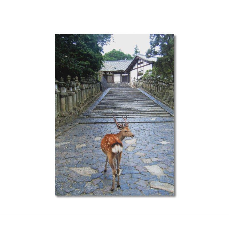 Nara 1 Home Mounted Aluminum Print by Katie Schutte Art