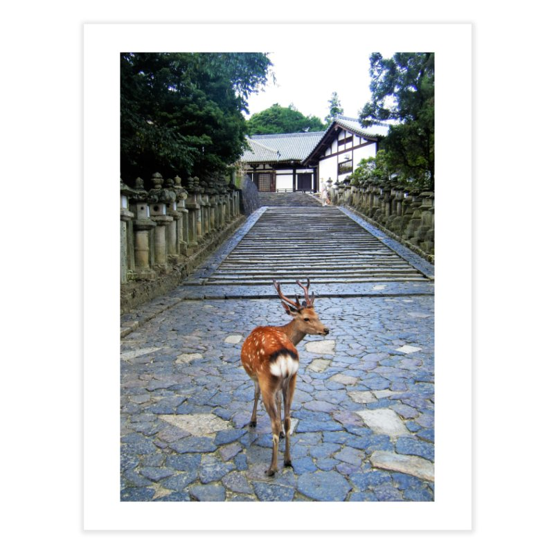 Nara 1 Home Fine Art Print by Katie Schutte Art