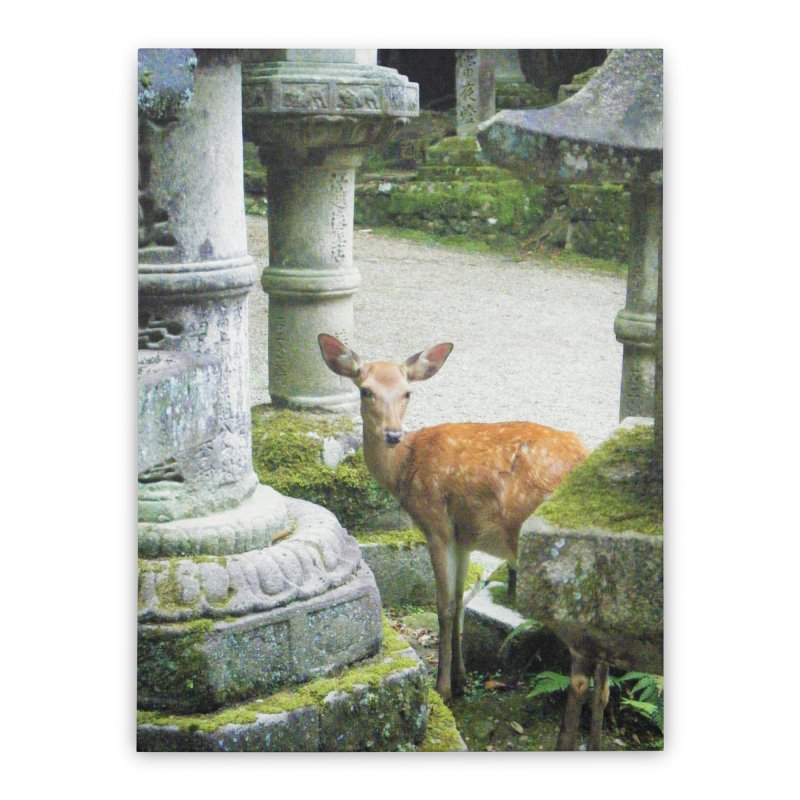 Nara 2 Home Stretched Canvas by Katie Schutte Art