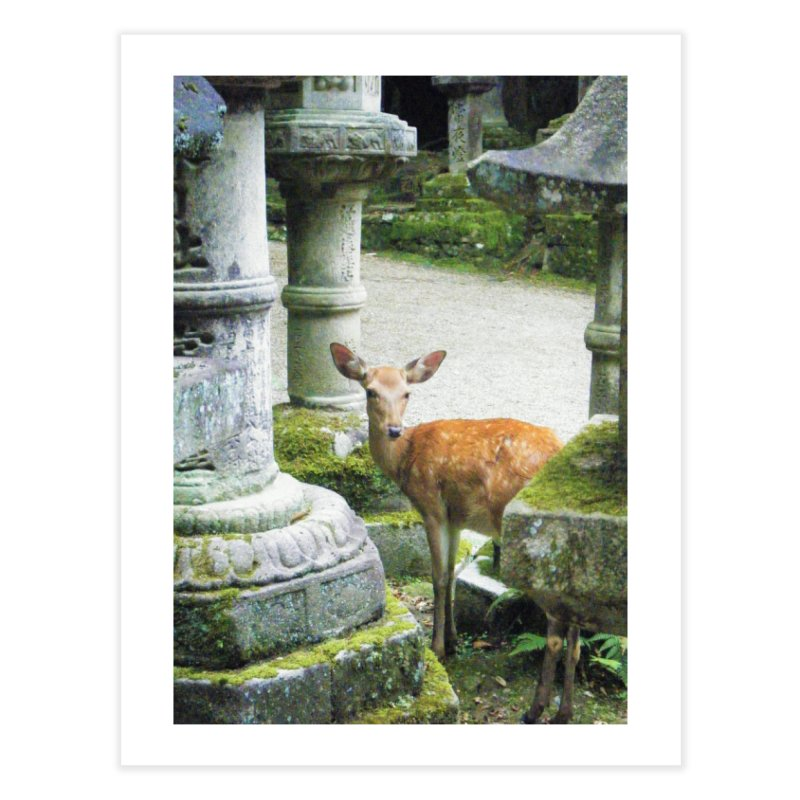 Nara 2 Home Fine Art Print by Katie Schutte Art