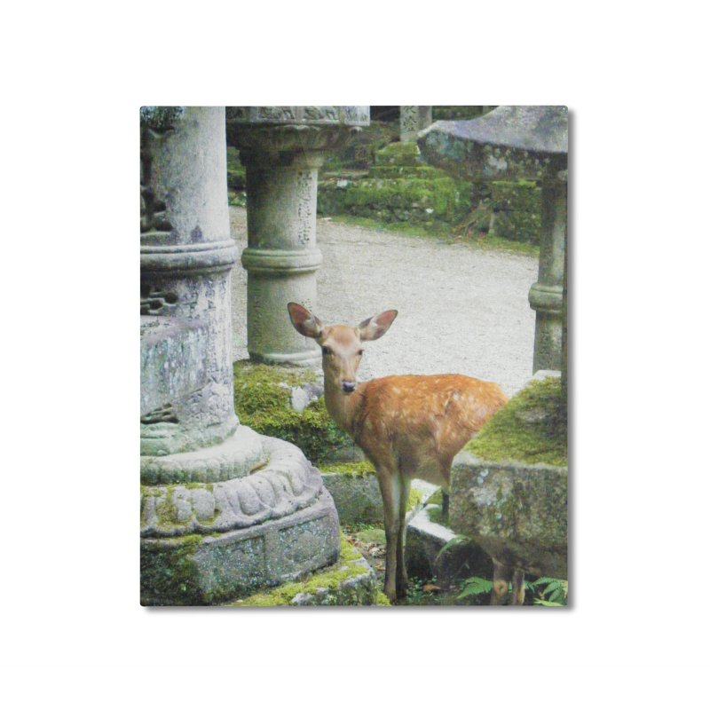 Nara 2 Home Mounted Aluminum Print by Katie Schutte Art