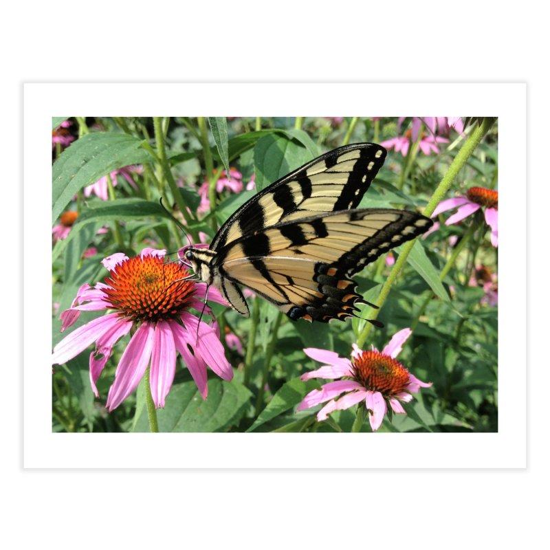 Butterfly Home Fine Art Print by Katie Schutte Art