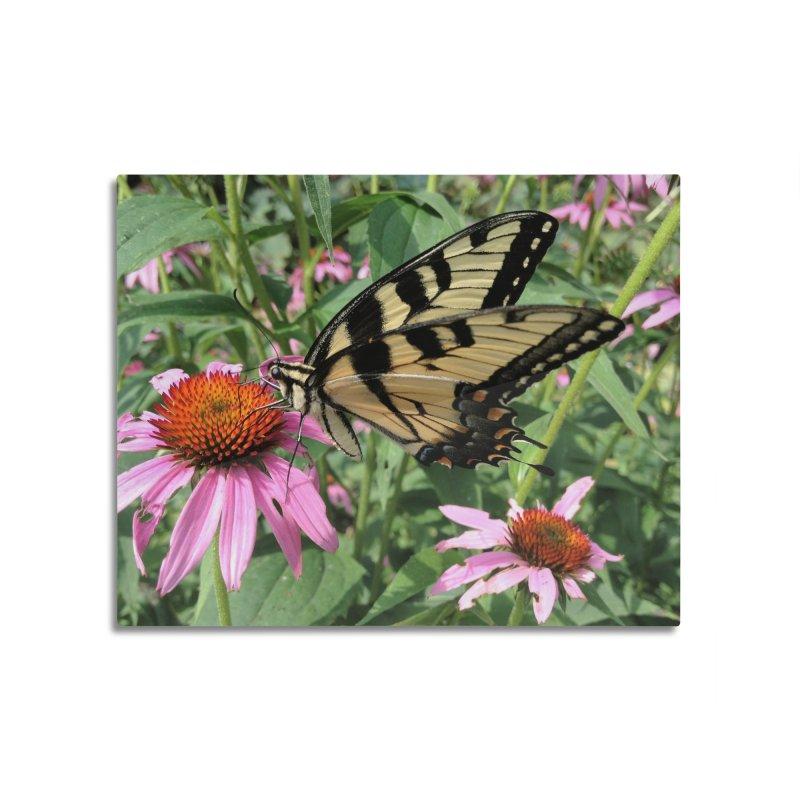 Butterfly Home Mounted Aluminum Print by Katie Schutte Art