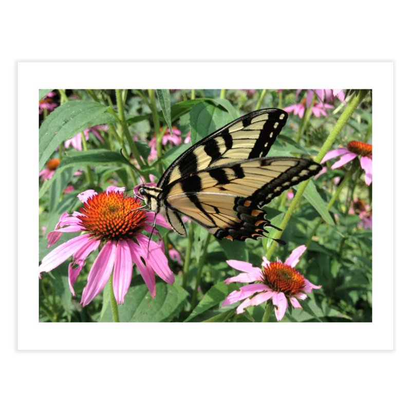 Butterfly Home Fine Art Print by Katie Schutte Art
