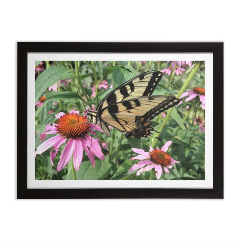 Butterfly in Framed Fine Art Print Black by Katie Schutte Art