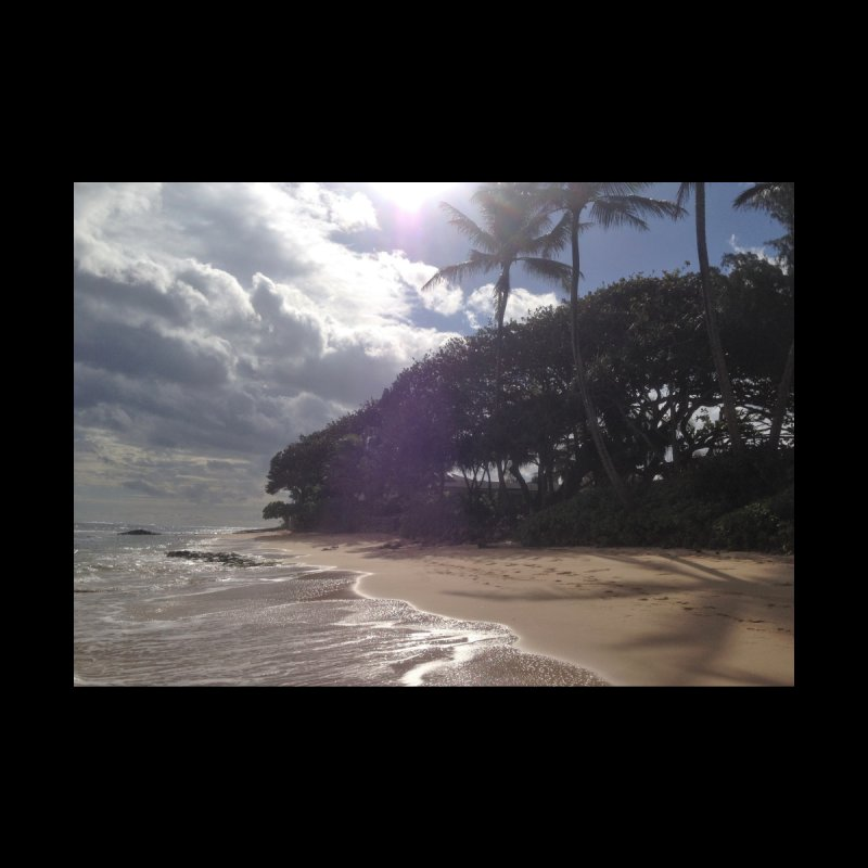 Shore Home Mounted Aluminum Print by Katie Schutte Art