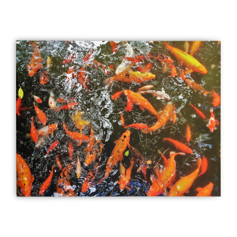 Koi Home Stretched Canvas by Katie Schutte Art
