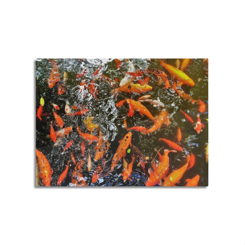 Koi Home Mounted Aluminum Print by Katie Schutte Art
