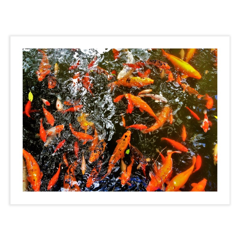 Koi Home Fine Art Print by Katie Schutte Art