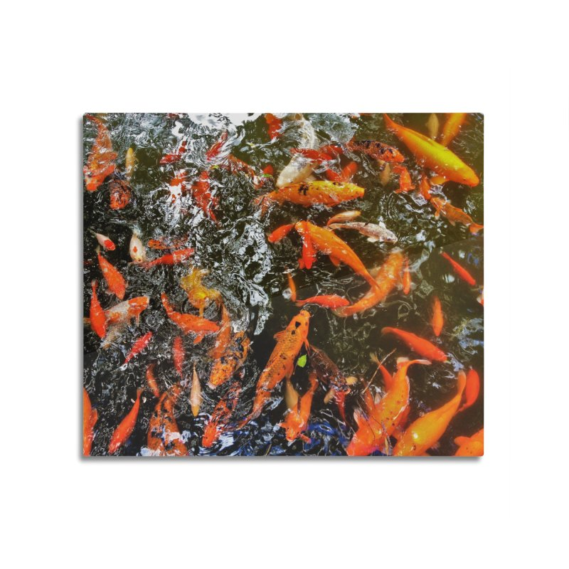 Koi Home Mounted Acrylic Print by Katie Schutte Art