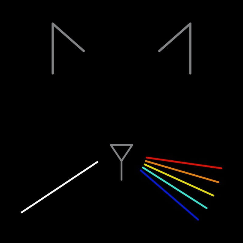 Dark Side of the Meow by KEIN DESIGN
