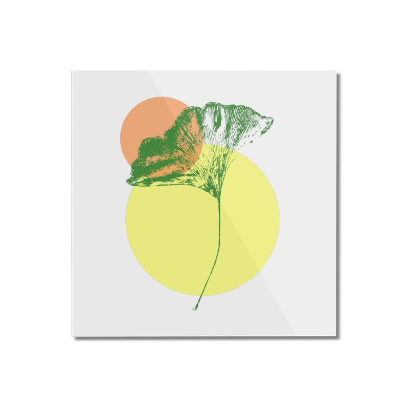 Ginkgo Leaf #3 Home Mounted Acrylic Print by LadyBaigStudio's Artist Shop